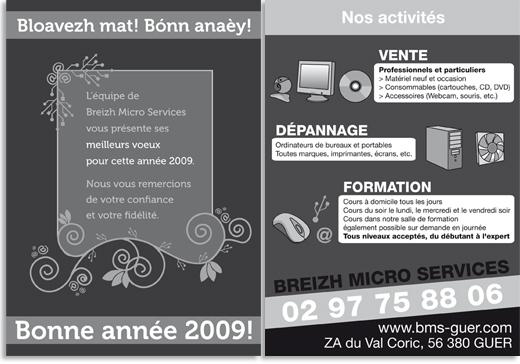 breizh-micro-services-guer-informatique-flyer-bonne-annee-2009-activites