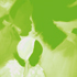 kendalch-gwer-vert-enfants